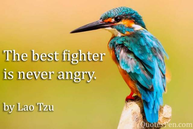 best-fighter-angry-quote