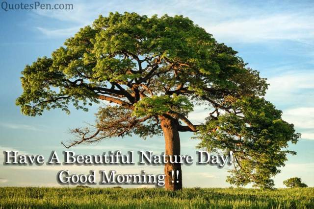 beautiful-nature-good-morning-quote