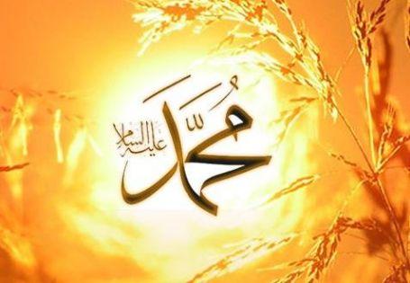 نسب النبي صلى الله عليه وسلم وأسماءه وأمهاته وأزواجه وأولاده