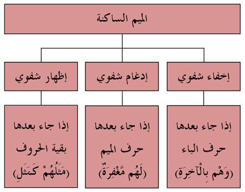 الميسر لأحكام التجويد جمعية القرآن الكريم للتوجيه
