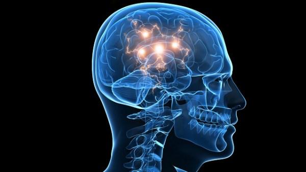 optogenetica en humanos
