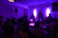 freedonia-concierto
