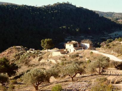 Foto Pantano Tibi 50