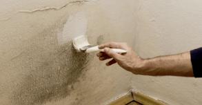 pintando-moho-pared