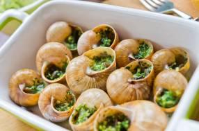 escargots caracoles