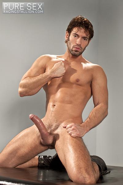 Gay Pure 79