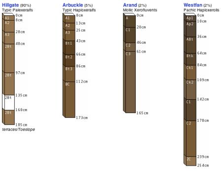 Soil Profiles in Color