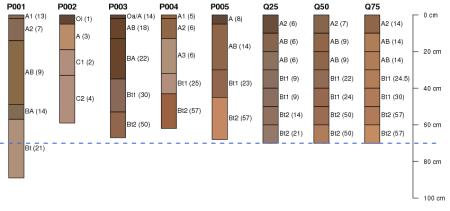 Aggregate Profiles