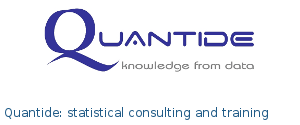 Quantide: statistical consulting and training