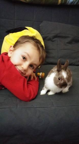 Enfant et lapin