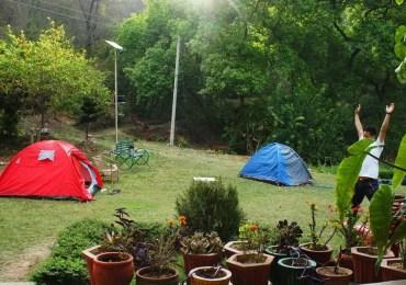 jungle camping near dharamshala