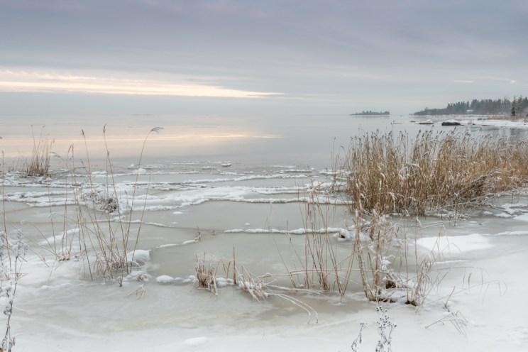 Marraskuu - Pekka Mehtälä