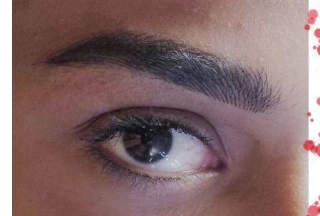 beautiful eyebrows egypt