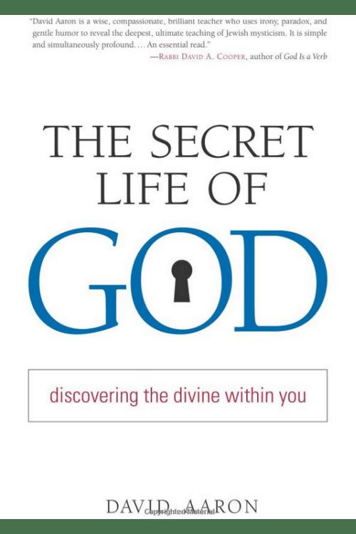 Secret Life of God by Rabbi David Aaron