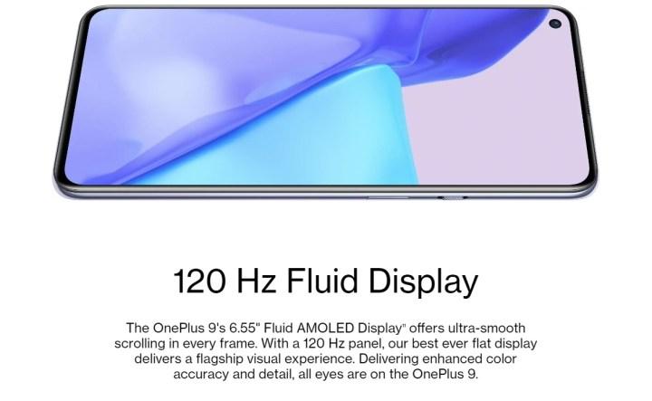 OnePlus 9 Display