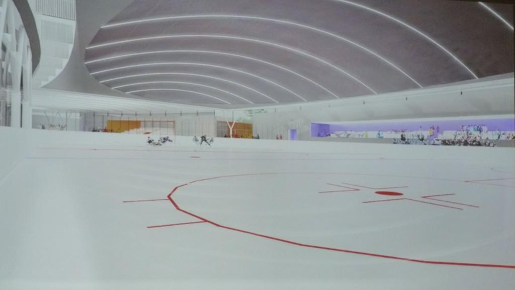 Projekt 3 (SAR): Hokejová hala