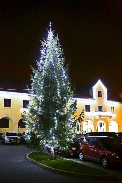 Vianočná výzdoba v Rači: Stromček pred Nemeckým kultúrnym domom