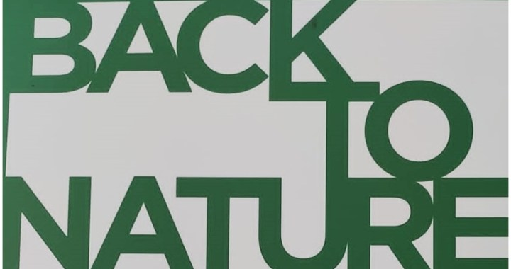 Back to Nature arte e natura a Villa Borghese