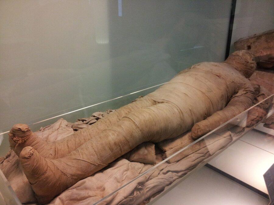 La mummia dalla lingua d'oro