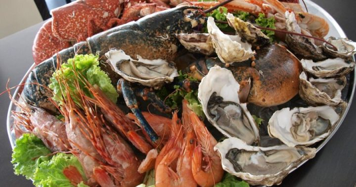 Crostacei e molluschi fonte di nutrimento salutare