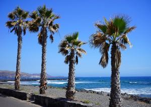 Italia (volo) Tenerife: Playa De Las Américas.jpg