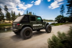 baja-pine-forrest-trail-of-missions-2017-harroldphoto-05