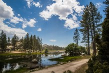 baja-pine-forrest-trail-of-missions-2017-harroldphoto-08