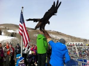 BOP eagle