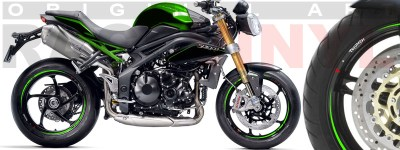 Racevinyl Race logoTriumph Speed Triple verde