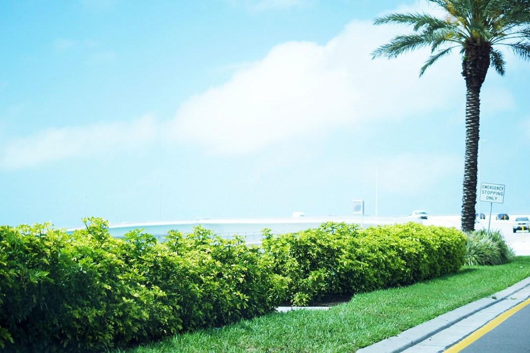 Clearwater Beach Florida by Rachael Burgess