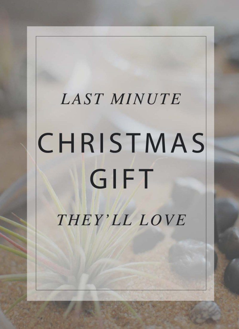 Last Minute Christmas Gift They'll Love