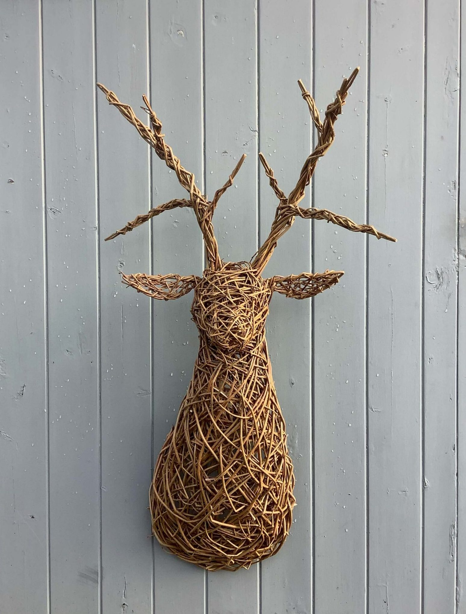 Stag Head Bust 1