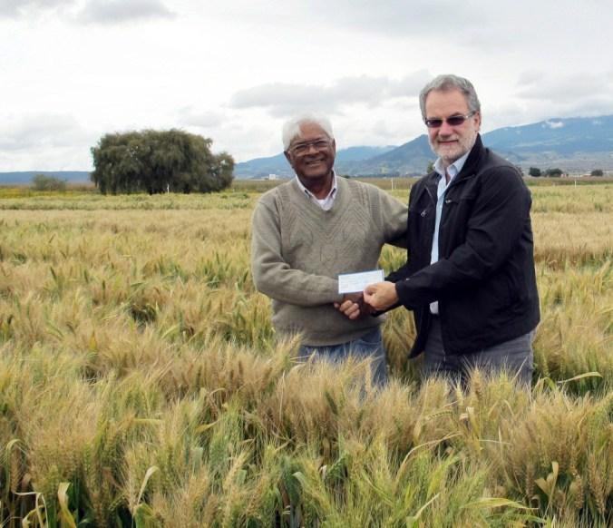 Wheat breeders