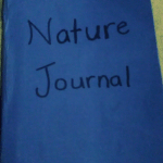 How (and Why!) to Keep A Nature Journal With Preschoolers and Kindergarteners