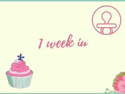 1 week in!