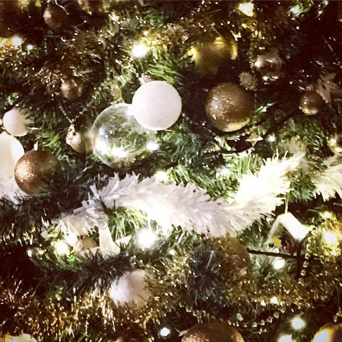 #MySundayPhoto - Christmas Is Coming