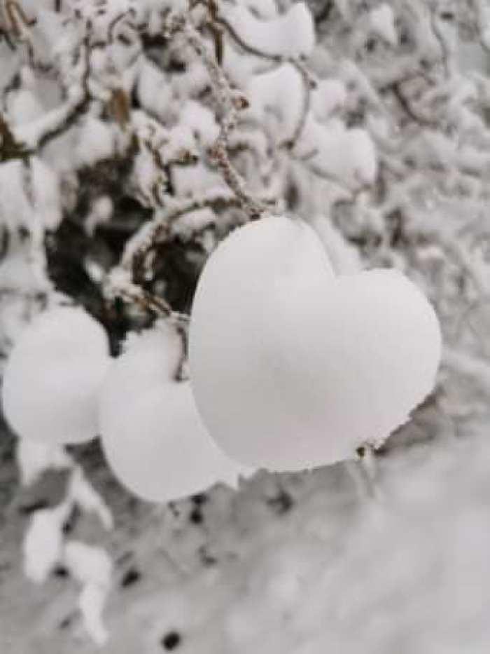 #MySundaySnapshot - Snowmance 02/52 (2021)
