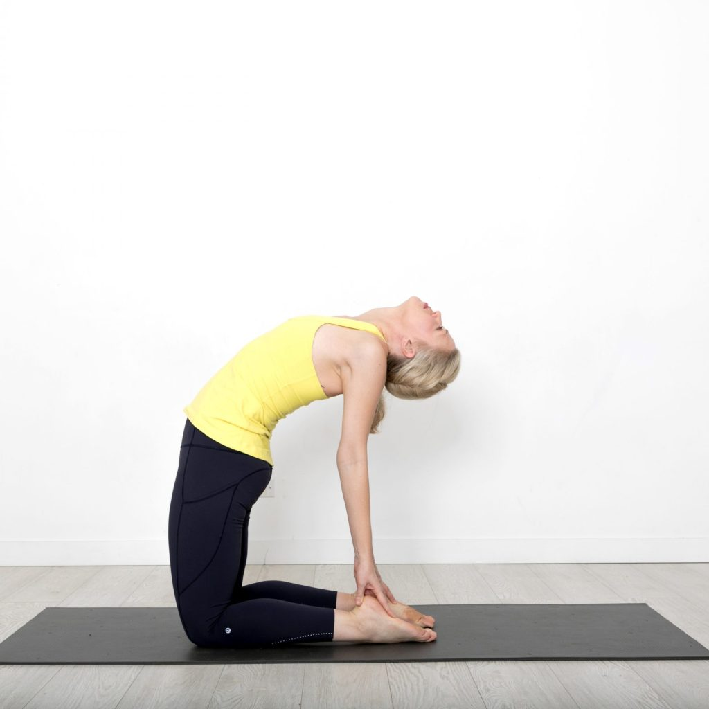 How To Sequence To Camel Pose  Rachel Scott