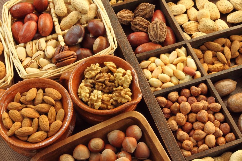 protein vegetarian diet