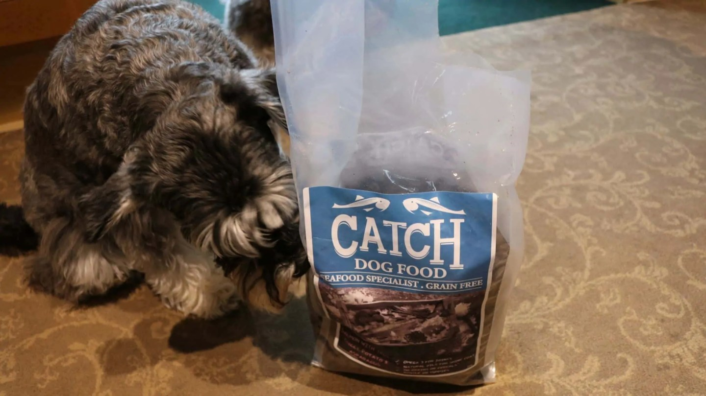 Catch Salmon and Trout Kibbles