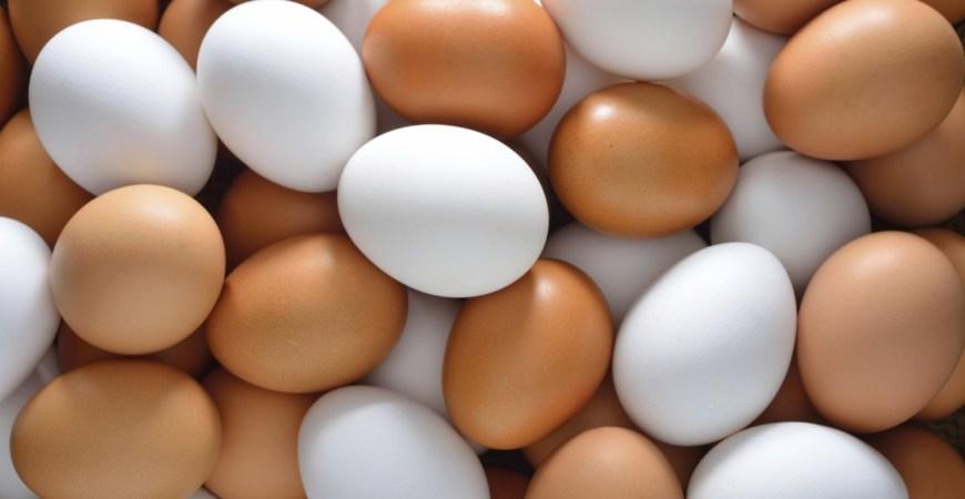 πώληση αυγών