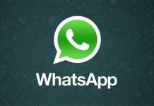 Net. Logo promo whatsapp