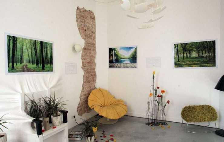 Camera naturii
