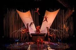 Cirque du Soleil Spectacolul Varekai (2)