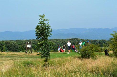 golf pianu de jos (5)