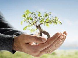 Sair, entrar, permanecer, submergir: plantação de igrejas e negócios hoje