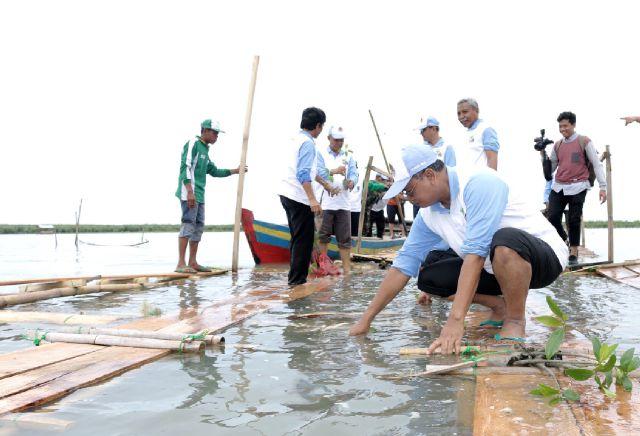 18% Hektar Wilayah Lampung Merupakan Lahan Kritis