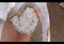 Lampung Butuh 260 Ton Garam