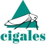 Cigales Ardèche Verte