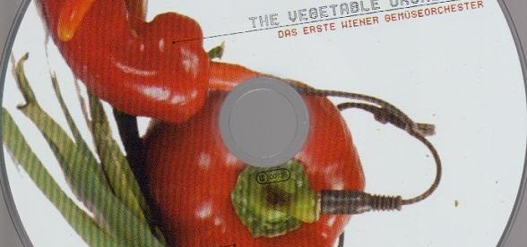 vegetable-orchestra